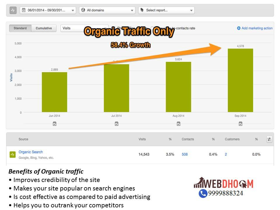 what is organic search in seo